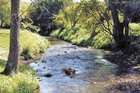 stream walkway