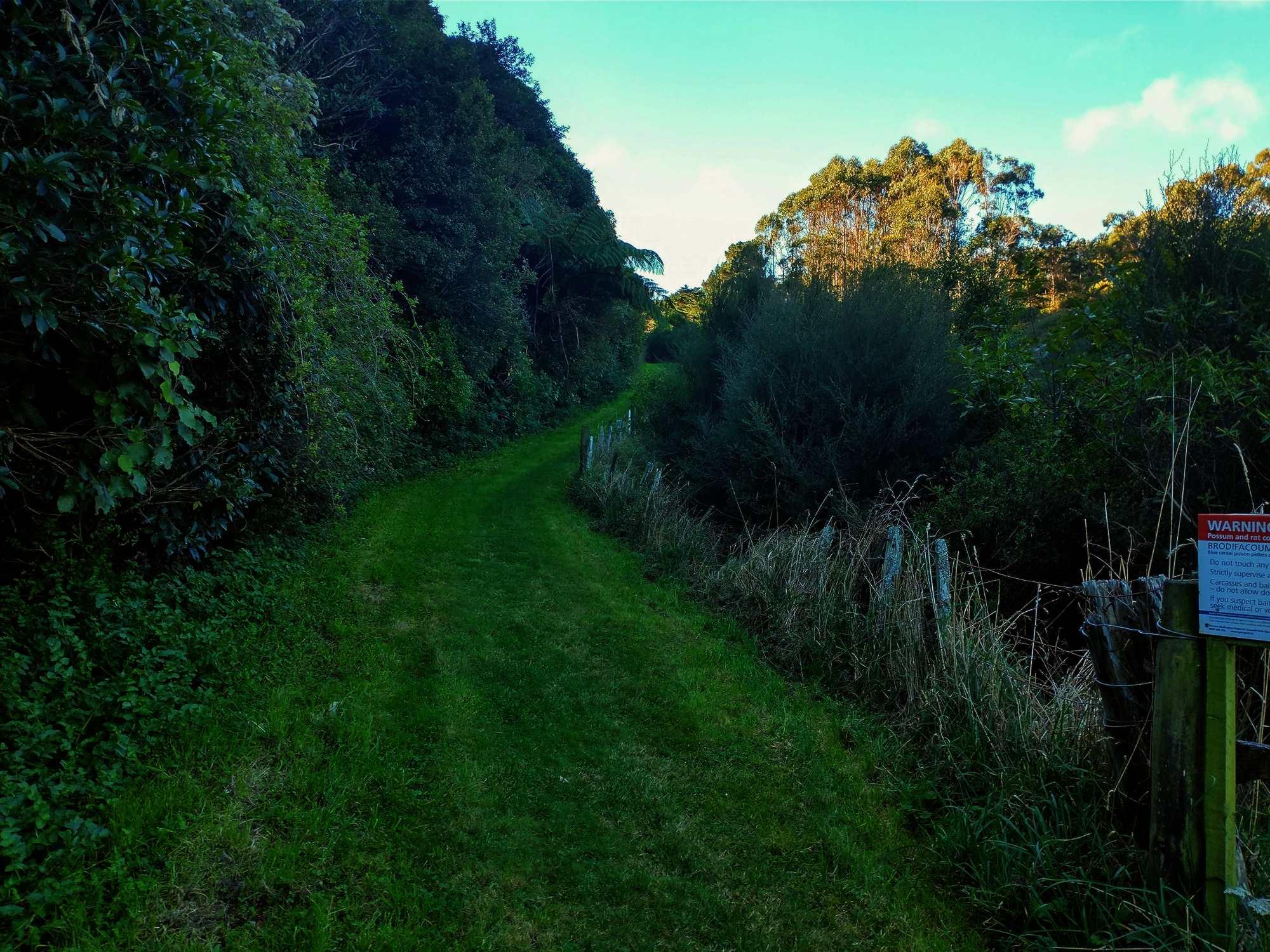 Woodburn Reserve April 2021 | Friends of Tawa Bush