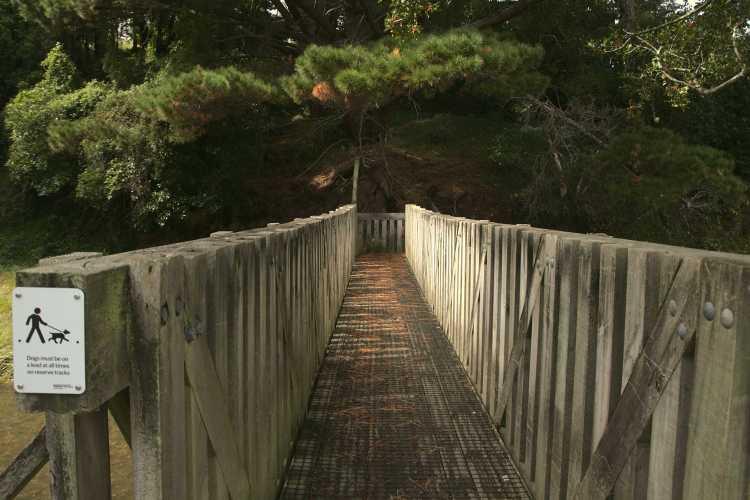 Porirua Stream and bridge, Willowbank Reserve