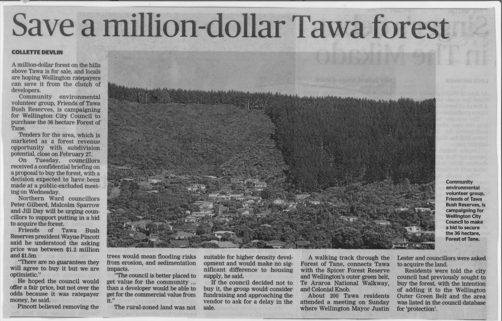 Save a Million-dollar forest media article
