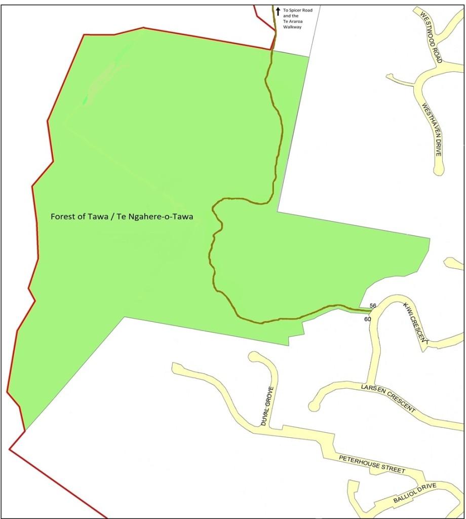 Forest of Tawa Walking Map | Friends of Tawa Bush Reserves