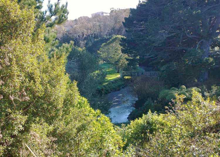 Porirua Stream and Willowbank Reserve May 2021