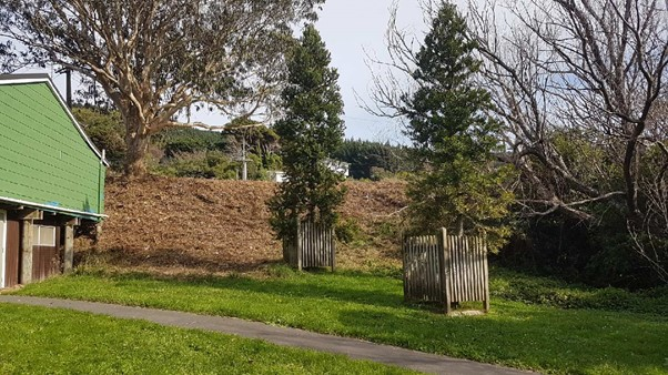 Site after clearing 20-May-2019