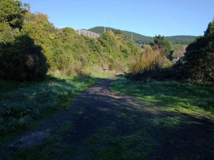 Willowbank 2021_05 path