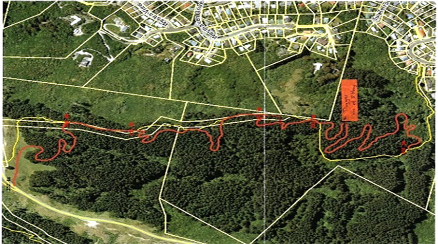 Forest of Tawa new track map May 2021